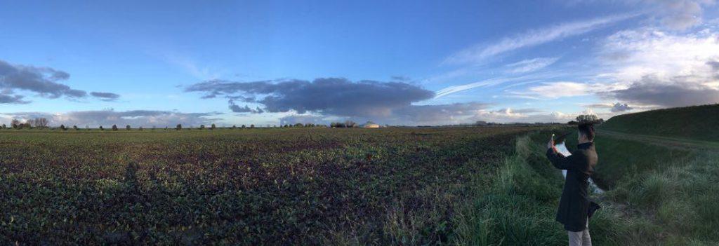 Beetroute Field